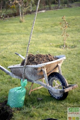 Sainte catherine jardinage