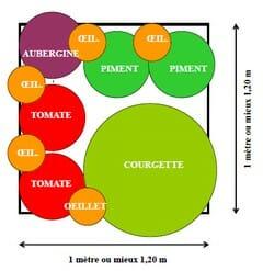 plan d'un potager en carré