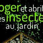 Loger et abriter les insectes au jardin vincent albouy