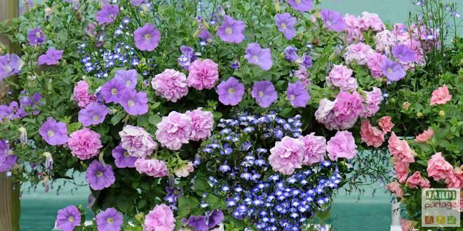 jardinieres fleuries originales