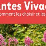 Plantes Vivaces Claudine Croux