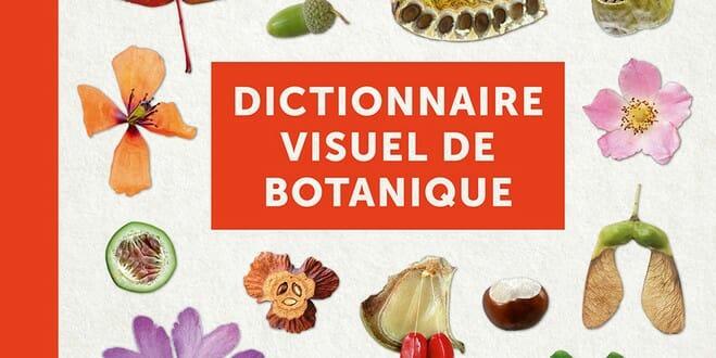 dictionnaire visuel de botanique maurice reille