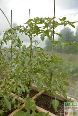 abri tomates comment le fabriquer soi m me jardipartage. Black Bedroom Furniture Sets. Home Design Ideas