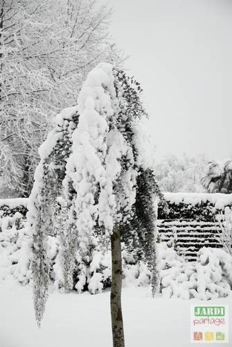 neige jardin avantages