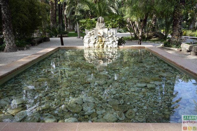 bassin dame elche huerto del cura