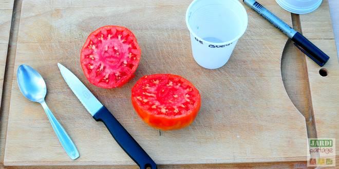 faire ses graines de tomates
