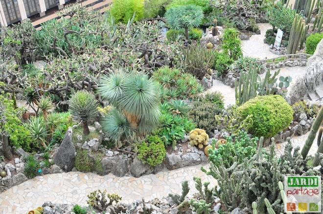 avis jardin exotique monaco