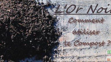 comment utiliser compost