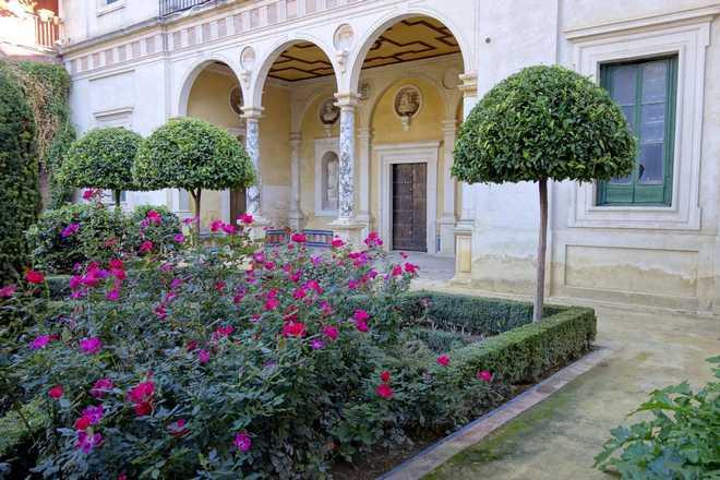 comment creer un jardin andalou