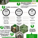conseils pour jardin naturel